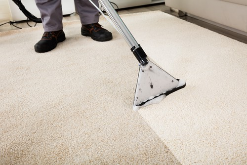 green-carpet-cleaning