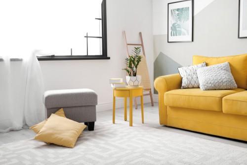 How Do I Deep Clean My Carpet?