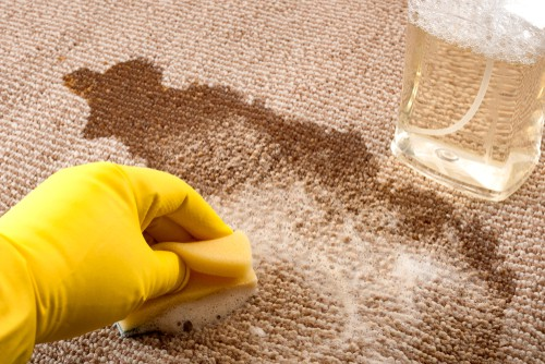 How Can I Disinfect My Carpet Naturally?
