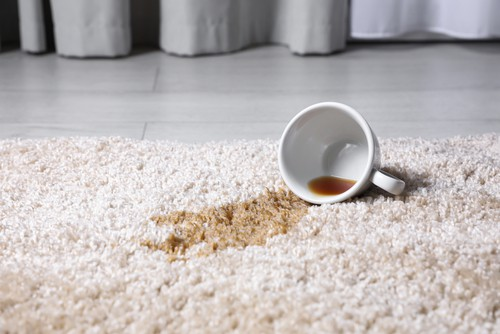 How To Prevent Carpet From Discoloration?