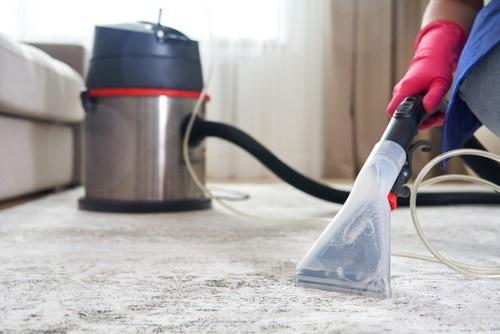 Dangers of Breathing in Dust Mites